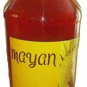 mayan-honey-1kg